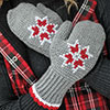 Cuddle-Up Crochet -- Embroidered Tunisian Mittens