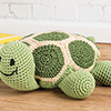 Turtle Time Pillow