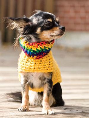 Small Pooch Pullover Crochet Pattern
